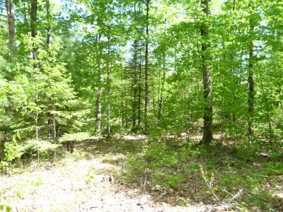 Marquette Residential Lots & Land For Sale: Lake Enchantment Rd #Parcel B