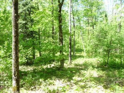 Marquette Residential Lots & Land For Sale: Lake Enchantment Rd #Parcel C