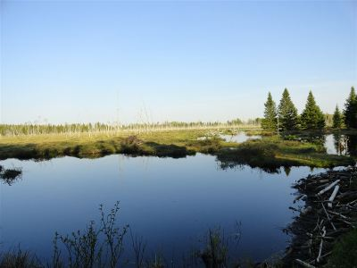 Michigamme Residential Lots & Land For Sale: 180 Acres Spruce River
