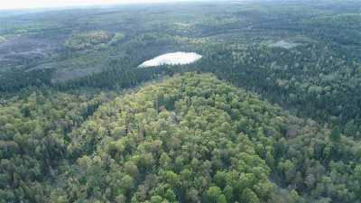 Michigamme Residential Lots & Land For Sale: 80 Acres Wildcat Lake