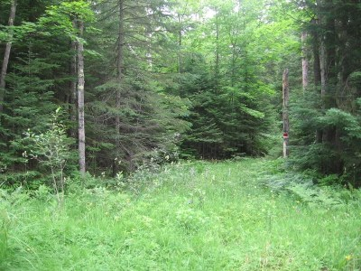 Marquette Residential Lots & Land For Sale: Old Kiln Rd