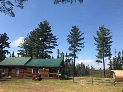 Ishpeming Single Family Home For Sale: 13990 Casey Lake Rd