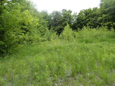 Munising Residential Lots & Land For Sale: Anthony Dr #Lot #15