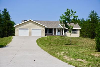 Marquette Single Family Home For Sale: 123 Brewer Dr