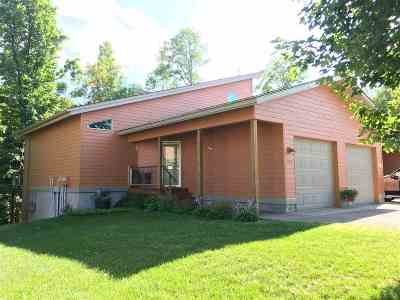 Marquette Single Family Home For Sale: 1051 Merlin Ln