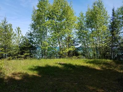 Residential Lots & Land For Sale: 9827 Highbanks Drive