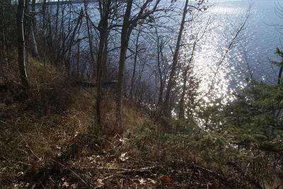 Residential Lots & Land For Sale: Bluffs Highway