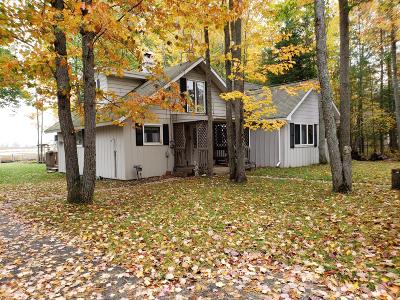 Single Family Home For Sale: 1090 N Black River Road
