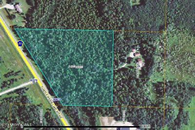 Residential Lots & Land For Sale: Turtle River Lake Road NE