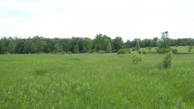 Residential Lots & Land For Sale: 480th Street