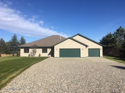 Bemidji MN Single Family Home For Sale: $300,000