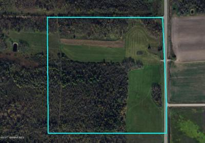 Residential Lots & Land For Sale: County Road #3