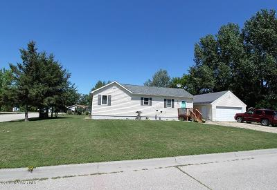 Thief River Falls Single Family Home For Sale: 713 E 11th Street