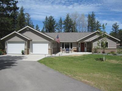 Bemidji Single Family Home For Sale: 6251 Whistler Drive NW