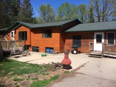Gonvick Single Family Home For Sale: 46496 County 7 Road