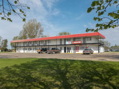 Commercial For Sale: 1203 State 32 Highway N