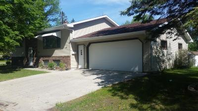 Thief River Falls Single Family Home For Sale: 225 12th Street W
