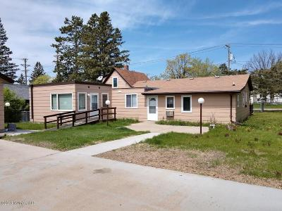 Bemidji Single Family Home For Sale: 622 21st Street NW