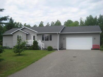 Bemidji MN Single Family Home For Sale: $199,900