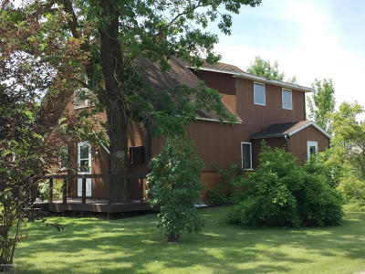 Greenbush Single Family Home For Sale: 447 Stephen Avenue W