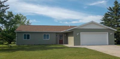 Thief River Falls Single Family Home For Sale: 402 Evergreen Street