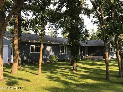 Greenbush Single Family Home For Sale: 565 Park Avenue W
