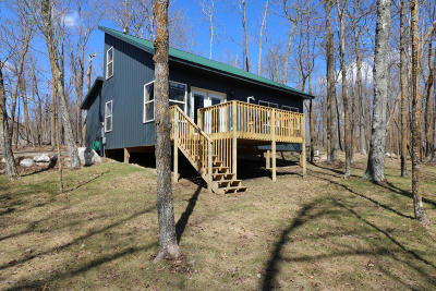 Bemidji MN Single Family Home For Sale: $249,900