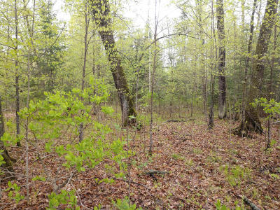 Residential Lots & Land For Sale: Loon Bay Trail