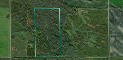 Residential Lots & Land For Sale: County 131 Road