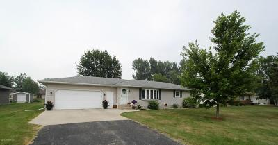 Thief River Falls MN Single Family Home For Sale: $194,900