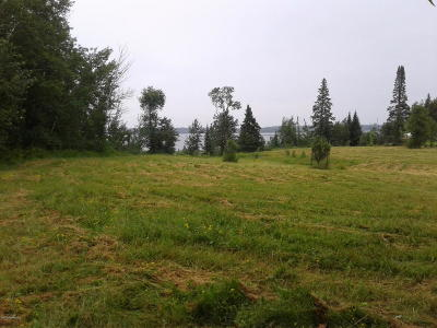 Residential Lots & Land For Sale: S Gull Lake Road W