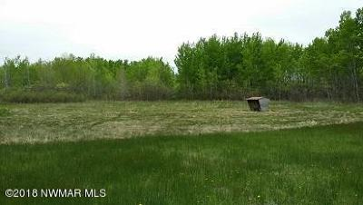 Residential Lots & Land For Sale: 12010 450th Street NW