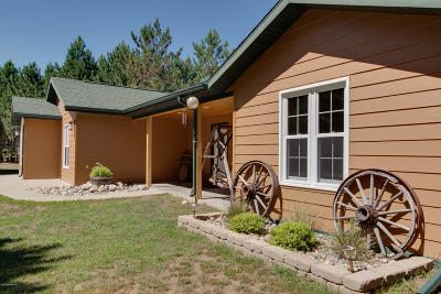 Bemidji MN Single Family Home For Sale: $249,800