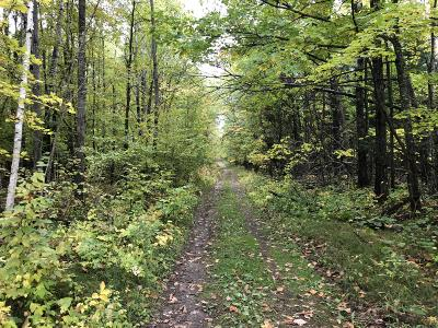 Residential Lots & Land For Sale: 279th Avenue