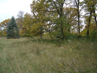 Residential Lots & Land For Sale: 142nd Street NE