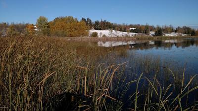 Residential Lots & Land For Sale: Buckhorn Road NE #Lot 5