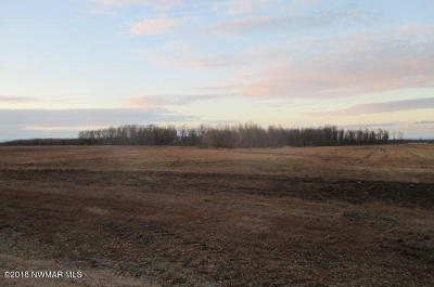 Residential Lots & Land For Sale: County Road 2 Road