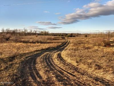 Residential Lots & Land For Sale: 390th Street