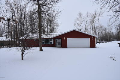 Single Family Home For Sale: 219 Birch Drive N