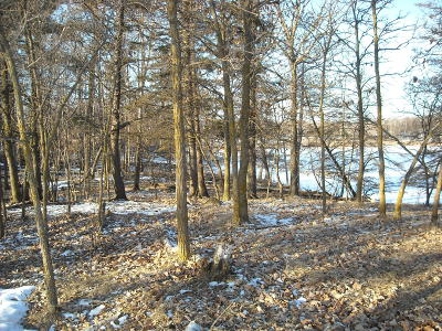 Residential Lots & Land For Sale: 420th Street SE