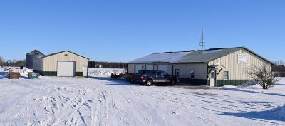 Thief River Falls MN Commercial For Sale: $254,900