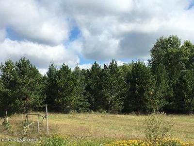Residential Lots & Land For Sale: 460th Street