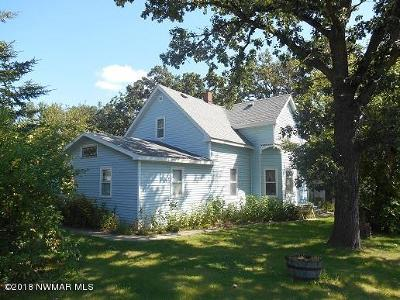 Greenbush Single Family Home For Sale: 135 4th Street S