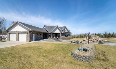 Bemidji Single Family Home For Sale: 5007 Bull Elk Court SW