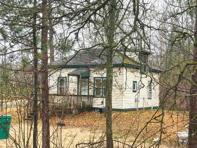 Bemidji Single Family Home For Sale: 14628 Finn N Feather Boulevard SE