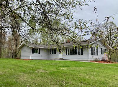 Single Family Home For Sale: 49276 County 45 Road