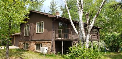 Bemidji Single Family Home For Sale: 115 Circle Pines Drive NW