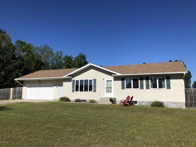 Bemidji Single Family Home For Sale: 318 Becida Road SW