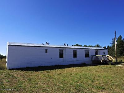 Bemidji Single Family Home For Sale: 6373 Palomino Lane NW