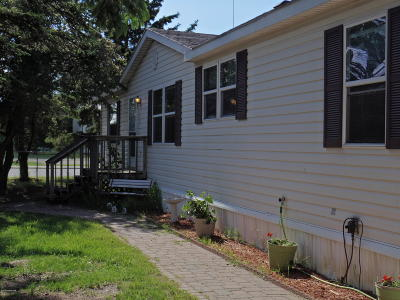 Shevlin MN Single Family Home For Sale: $99,000